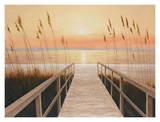 Walkway to Sea Print by Diane Romanello
