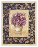 Begonia Rose Poster af Shari White