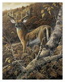 Duke of Autumn Posters by Duane Geisness