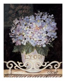 Hydrangeas of Lyon Art by Shari White