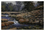 Quietly Through the Rocks Prints by Bruce Braithwaite