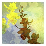 Orchid Shadows II Print by Jan Weiss