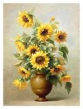 Sunflowers in Bronze II Plakater av  Welby