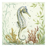 Pacific Seahorse Prints by Kate McRostie