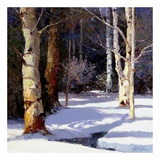 Beautiful Winter Posters by Kent Wallis