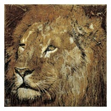 Portrait de Lion Prints by Arietta Braun