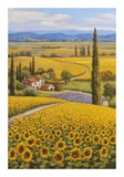 Sunflower Field Print by Sung Kim