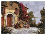 Bougainvillea Prints by Guido Borelli