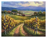 Vineyard Hill I Prints by Sung Kim