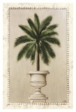 Palm Appeal I Prints by  Welby