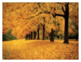 Gold of Autumn West Print by M. Ellen Cocose