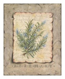 Vintage Herbs, Rosemary Art by Constance Lael
