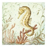 Atlantic Seahorse Poster by Kate McRostie