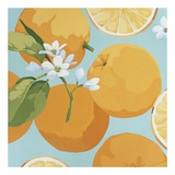 Fresh Oranges Art by Martha Negley