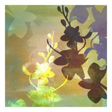 Orchid Shadows III Kunstdruck von Jan Weiss