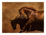 Adobe Dancer Print by Robert Dawson