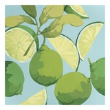 Fresh Limes Prints by Martha Negley