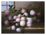 Hydrangea Blossoms l Print by  Welby