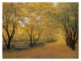 Autumn Gold Prints by Diane Romanello