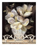 Magnolias of Nice Posters by Shari White
