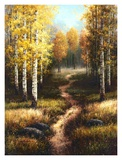 Birch Path Print by Arcobaleno 
