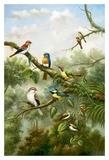 A Social Gathering Prints by  Bilben