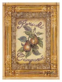 Pears of Campania Art by Shari White