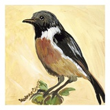 Bird VII Prints by Suzanne Etienne