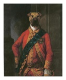 Sir Walter Bark Prints by  Massy