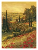 Toscano Valley II Affiches par Art Fronckowiak