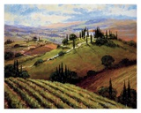 Tuscan Afternoon Affiches par Steve Thoms
