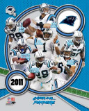 Carolina Panthers 2011 Team Composite Foto