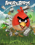 Angry Birds 3-D Prints