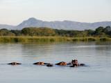 Malawi  Upper Shire Valley  Liwonde National Park