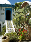 Tunisia, Tunis, Sidi-Bou-Said; Courtyard of a Traditional Riad or Merchant's House Photographic Print by Nick Laing