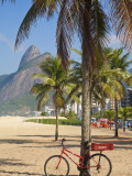 Brazil, Rio De Janeiro, Leblon Beach, Bike Leaning on Palm Tree Photographic Print by Jane Sweeney