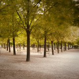Jardin Du Luxembourg, Latin Quarter, Paris, France Photographic Print by Jon Arnold