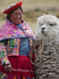 Peru, a Female with an Alpaca at Abra La Raya Photographie par Nigel Pavitt