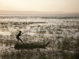 Ethiopia, Lake Awassa; a Young Boy Punts a Traditional Reed Tankwa Through the Reeds Fotografisk tryk af Niels Van Gijn