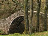 Ivelet Bridge, a Traditional Packhorse Bridge, Swaledale, Yorkshire Dales National Park, England Photographic Print by Paul Harris