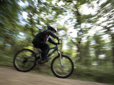 England, Hampshire, New Forest; Boy Cycling on a Path Through Woodland Photographic Print by Will Gray
