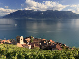 Switzerland, Vaud, Lavaux Vineyards, St; Saphorin Village and Lac Leman / Lake Geneva Photographic Print by Michele Falzone