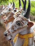 India, Chettinad; Terracotta Horses Lined Up by the Ayyanar Temple Fotografie-Druck von Niels Van Gijn