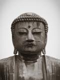 Great Buddha (Daibutsu), Kamakura, Tokyo, Japan Photographic Print by Jon Arnold