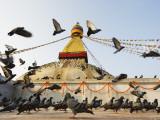 Asia, Nepal, Kathmandu, Kathmandu Valley, Boudhanath, Boudha Stupa, (Chorten Chempo), Pigeons Photographic Print by Christian Kober