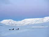Arctic, Norway, Spitsbergen; Dog Sledding Near Longyearbyen Photographic Print by Nick Laing