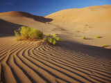 Oman, Empty Quarter; the Martian-Like Landscape of the Empty Quarter Dunes Fotografie-Druck von Niels Van Gijn