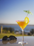 Tropical Drink at Hotel Cardoso, Maputo, Mozambique Photographic Print by Ian Trower