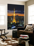 Tokyo Tower and Mt; Fuji from Shiodome, Tokyo, Japan Wall Mural by Jon Arnold
