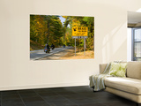 Usa, New Hampshire, White Mountain National Park, Kankamagus Highway Wall Mural by Alan Copson